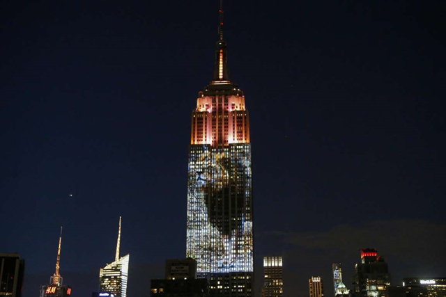 A photo of Cecil the Zimbabwean lion, who was killed by an American dentist causing international outrage, is projected on the Empire State Building in the 'Projecting Change on the Empire State Building' project in New York on 1 August 2015. Photo: AFP
