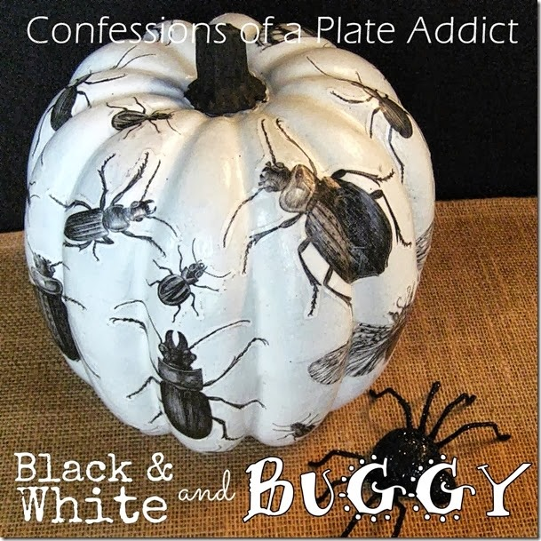CONFESSIONS OF A PLATE ADDICT Decoupage Black, White and Buggy All Over Pumpkin