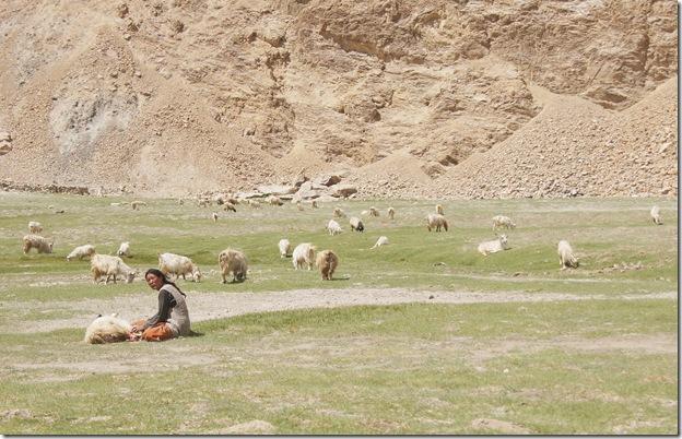 Ladakh128