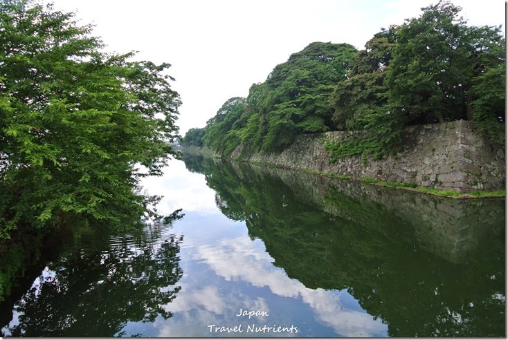 日本滋賀彥根城天守閣 (10)