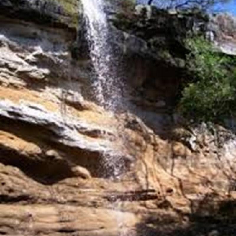 El Parque Provincial Cañadón de Profundidad y el cautivante ambiente de las selvas de Urunday.