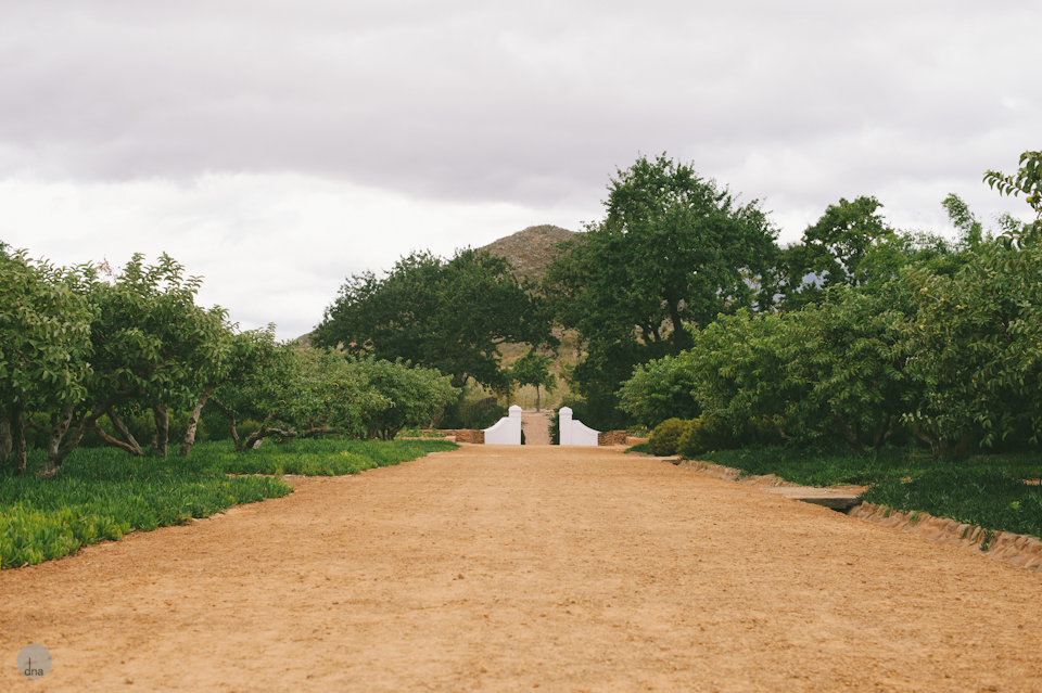 Adéle and Hermann wedding Babylonstoren Franschhoek South Africa shot by dna photographers 08.jpg