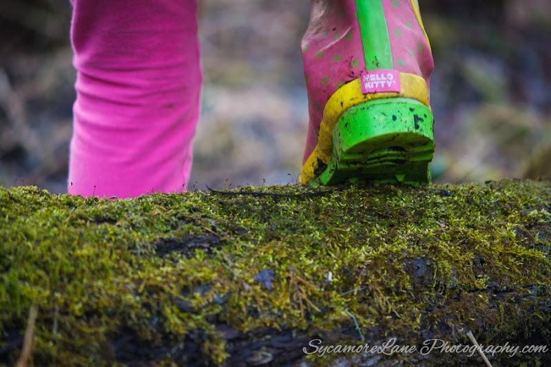 SycamoreLane Photography-2015- 365-  94