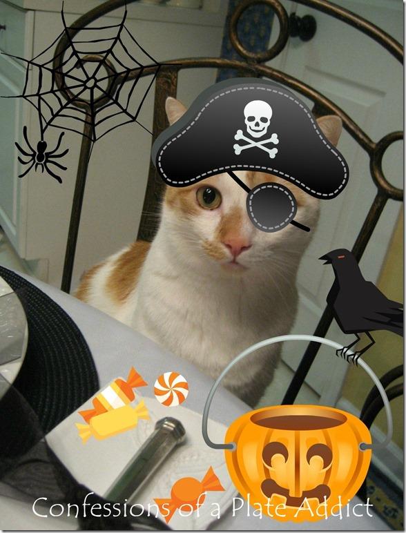 Baby Kitty Halloween