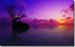 natura-tramontoviola