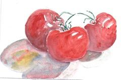 Monday tomatoes