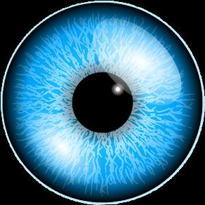 Eye Spinner For PC (Windows & MAC)