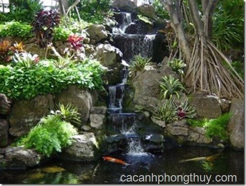 Hồ koi sân vườn với thác nước hình bậc than nhiều tầng tuyệt đẹp