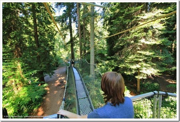 150630_Vancouver_UBCBG_0033