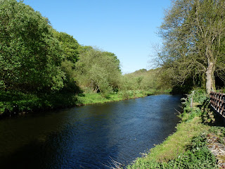 The River Wye once again. The water looked very blue today.