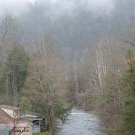 River in Pigeon Forge by Sarah Burroughs-McGehee - Landscapes Forests ( mountain, tennessee, trees, travel, river )