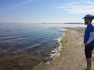 Shores of the quixotic Salton Sea.