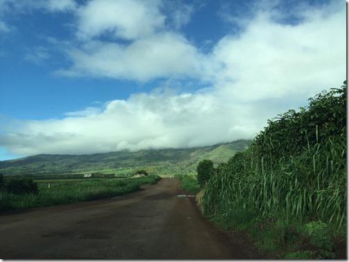 Hawaii 178