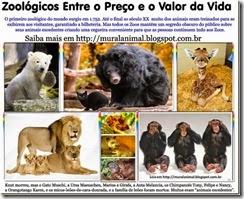 zoologico_thumb[1]