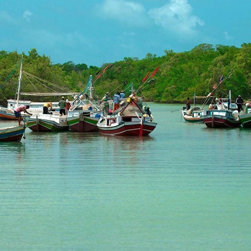 Cururupu – Maranhão
