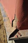 Lietus paskalojis, salīdis aiz krāsas un apmetuma, sasalis un - plorkt, atšķēlies no sienas.
