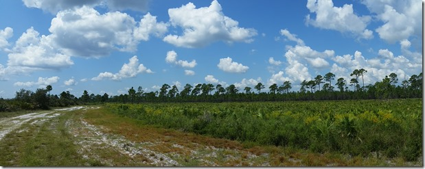 Flood Plain Pano