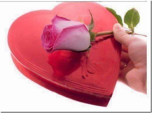 imagenes y frases de amor 14febrero (46)