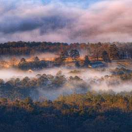 Country Tyme by Roger Chavers - Landscapes Prairies, Meadows & Fields ( farm, field, fog, view, landscape, country )
