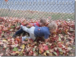 138 Boys in the leaves