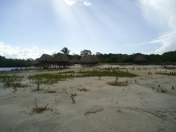 Ilha de Cajutuba - Marapanim, fonte: aroundguides.com