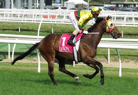 race 7_lucky hussler 1