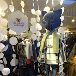 fashion in reykjavik in Reykjavik, Hofuoborgarsvaeoi, Iceland