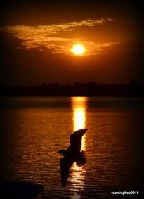 Sunset_April 23rd