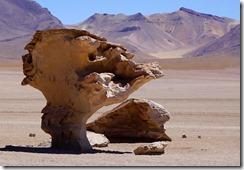 Lagunenroute Arbol de Piedra