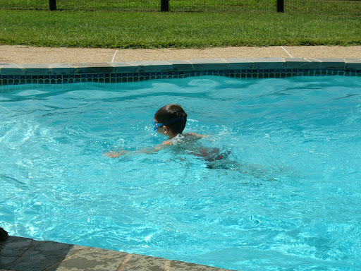 the lil fish - just jumped off the diving board!