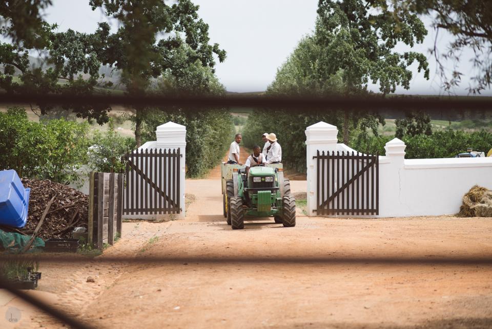Hannah and Pule wedding Babylonstoren Franschhoek South Africa shot by dna photographers 28.jpg