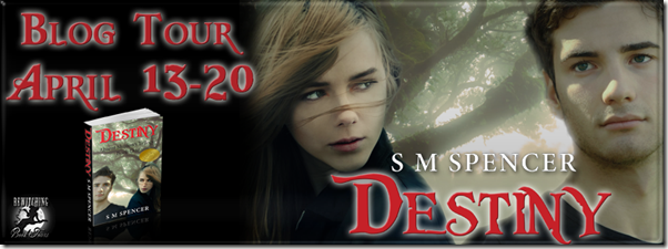 Destiny Banner 851 x 315