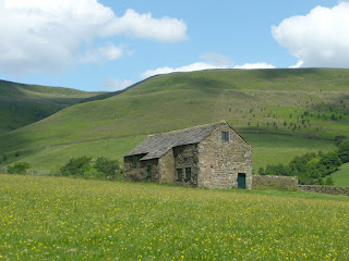 Barn in a flower meadow