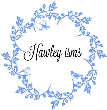 Hawley-isms