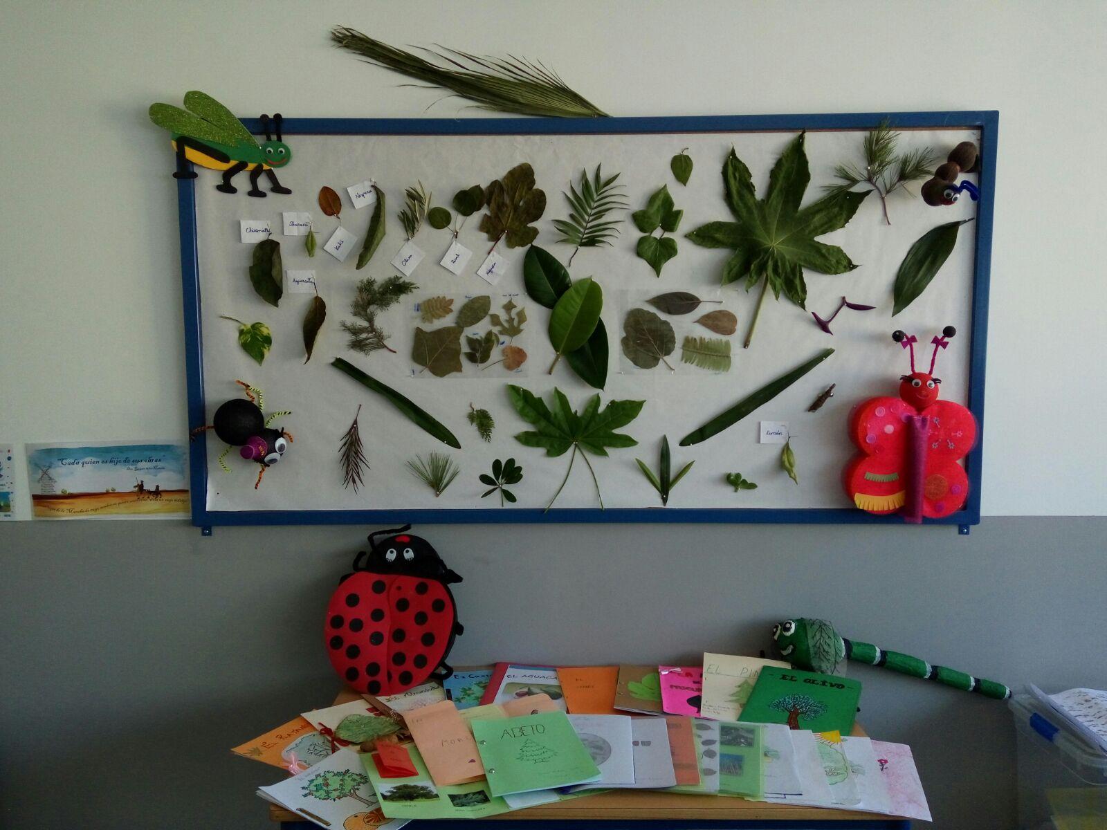 taquiamila: Muestrario de hojas y trabajos sobre árboles