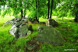 Poblíž obce Rokle se nachází na rozloze 3,27 ha Přírodní památka Sluňáky. Naleznete zde bloky a balvany křemenců, křemitýchpískovců a slepenců s typicky zvětralým povrchem (tzv. sluňáky).Křemencové balvany mohou být veliké až 4 m a mají nepravidelný tvar.