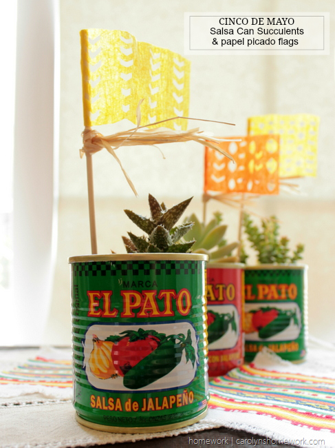Cinco de Mayo Succulent Cans via homework (9)