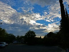 Pre-sunset, Citrus Heights