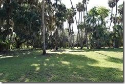 Lake Jesup Park