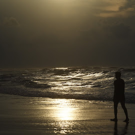 Golden silhouette by Shourjendra Datta - Landscapes Beaches