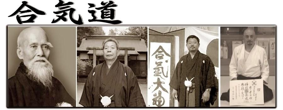 aikido1.jpg