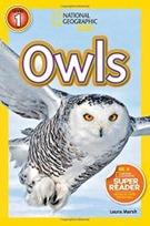 NG Owls