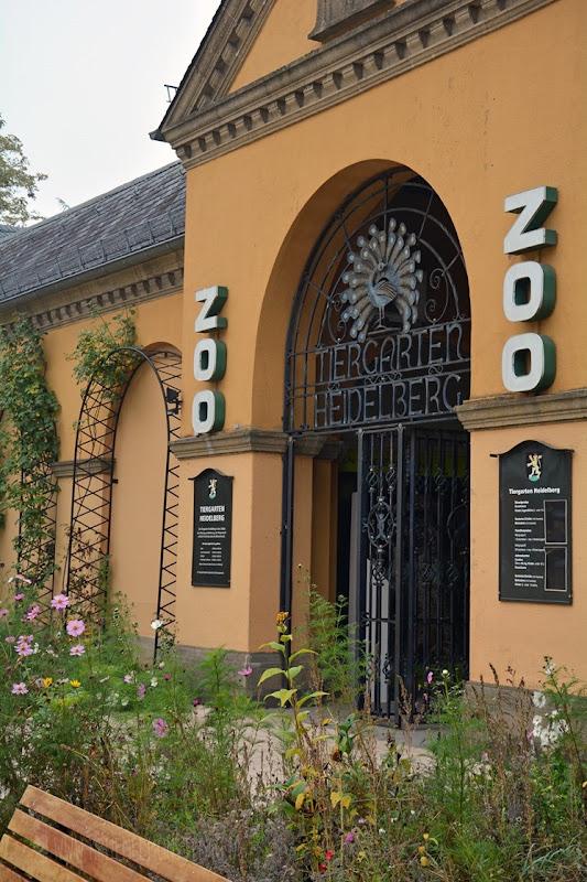 Zoo Heidelberg (02)