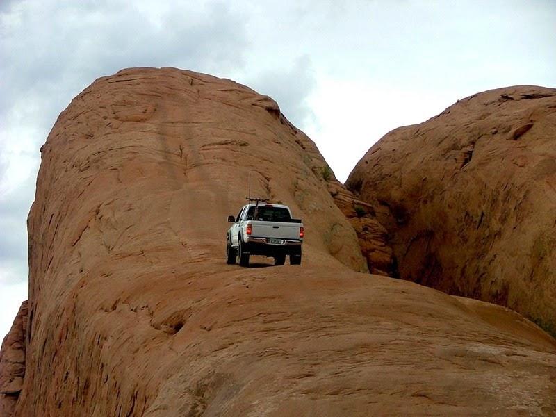 lions-back-moab-3