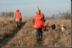 pheasant-hunting-in Iowa