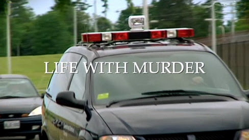 Morderca w rodzinie / Life With Murder (2010) PL.TVRip.XviD / Lektor PL