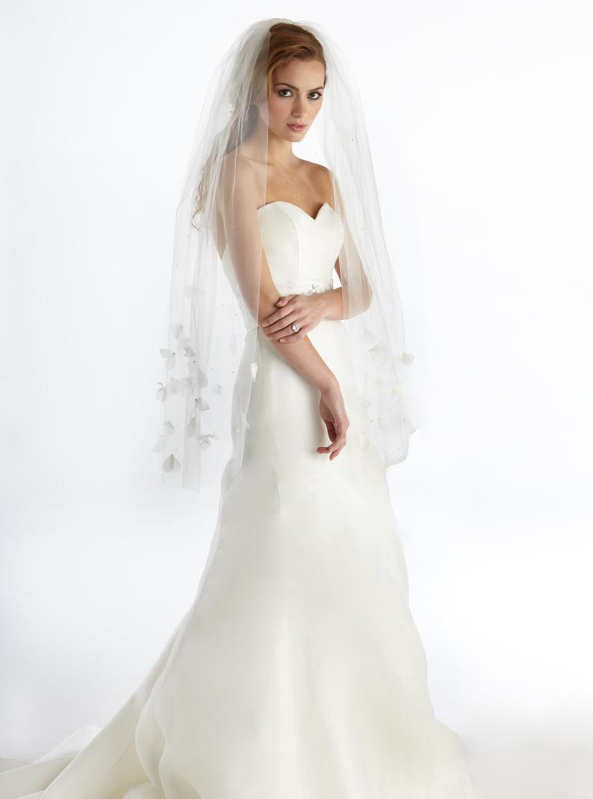 Is this veil idea too much for