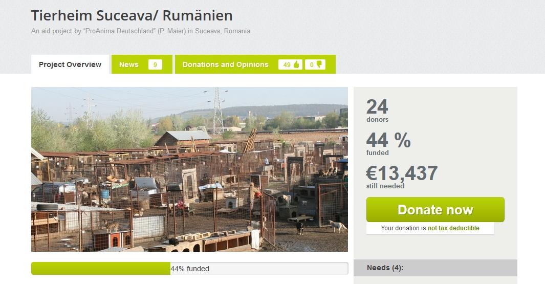 Donații adăpost câini Suceava