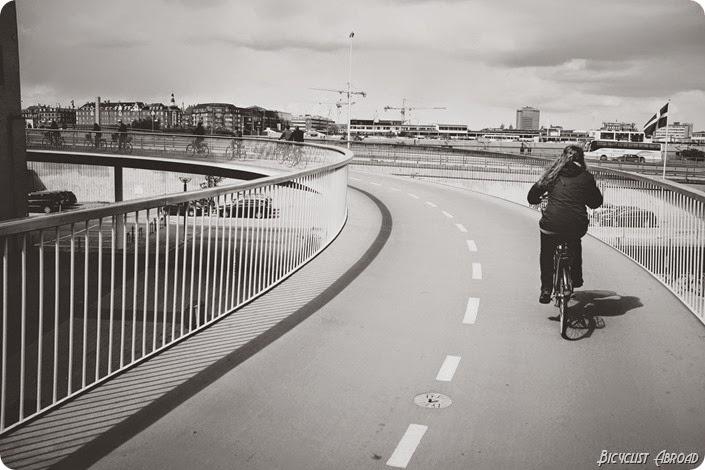 bikesnake2