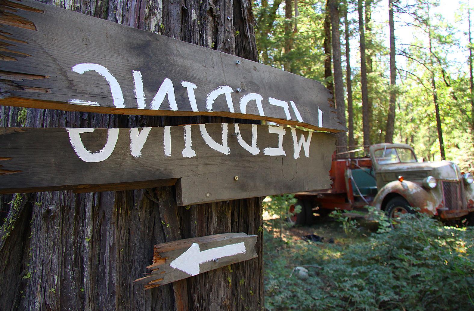 woodsy wedding centerpieces